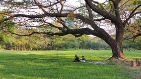 Μάρτιος 01.2018 άνθρωποι παίρνει ένα υπόλοιπο κάτω από το μεγάλο δέντρο στη Μπανγκόκ στοκ φωτογραφία με δικαίωμα ελεύθερης χρήσης
