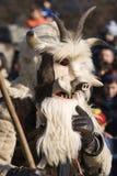 μάσκα δασύτριχη Στοκ εικόνες με δικαίωμα ελεύθερης χρήσης