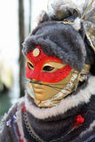 Μάσκα - καρναβάλι - Βενετία μερικά pics από την παχιά Τρίτη στη Βενετία Στοκ εικόνες με δικαίωμα ελεύθερης χρήσης