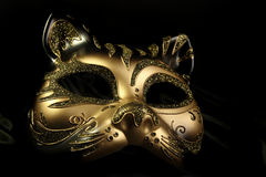 μάσκα καρναβαλιού περίκο Στοκ φωτογραφία με δικαίωμα ελεύθερης χρήσης