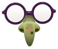 Μάσκα μαγισσών για τη μεταμφίεση Γυαλιά και πράσινη μύτη με τον ακροχορδώνα ελεύθερη απεικόνιση δικαιώματος