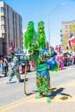 Μάσκα Lechones κοστουμιών καρναβαλιού στοκ εικόνες