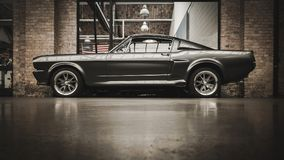 Μάστανγκ GT 500 της Ford Στοκ Εικόνες
