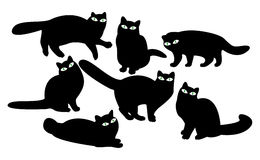 μάτια γατών διανυσματική απεικόνιση