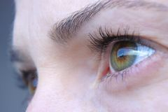 Μάτια γυναικών που εξετάζουν τον ορίζοντα πόλεων του Ώκλαντ στοκ εικόνα με δικαίωμα ελεύθερης χρήσης
