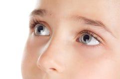 μάτια που προσέχουν προς &t Στοκ εικόνα με δικαίωμα ελεύθερης χρήσης