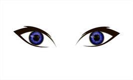 Μάτια σε ένα άσπρο υπόβαθρο Στοκ Εικόνες