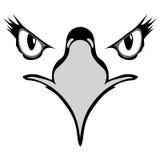 Μάτια του αετού διανυσματική απεικόνιση