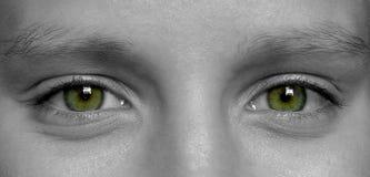 μάτια Στοκ Εικόνα