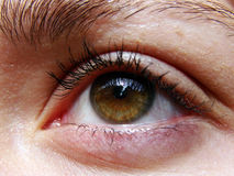 μάτια Στοκ φωτογραφίες με δικαίωμα ελεύθερης χρήσης