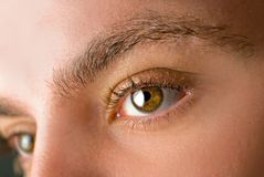 μάτια Στοκ εικόνες με δικαίωμα ελεύθερης χρήσης