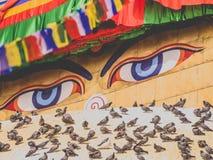 Μάτια Boudha στο Νεπάλ Στοκ φωτογραφίες με δικαίωμα ελεύθερης χρήσης
