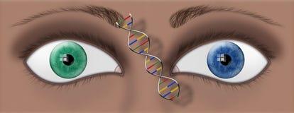 μάτια DNA Στοκ εικόνα με δικαίωμα ελεύθερης χρήσης