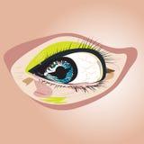 Μάτι για τη λεπτομέρεια διανυσματική απεικόνιση