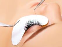 Μάτι γυναικών με μακρύ Eyelashes. Επέκταση Eyelash στοκ φωτογραφία με δικαίωμα ελεύθερης χρήσης