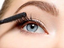 Μάτι γυναικών με τα μακροχρόνιες μαύρες eyelashes και makeup τη βούρτσα στοκ εικόνες