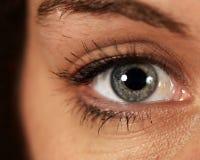 μάτι θεατών Στοκ εικόνες με δικαίωμα ελεύθερης χρήσης