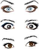 Μάτι διανυσματικές απεικονίσεις ενός χρώματος Στοκ εικόνες με δικαίωμα ελεύθερης χρήσης