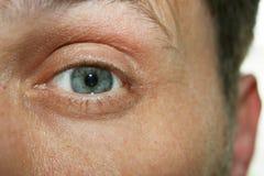 Μάτι και αυτί στοκ φωτογραφία