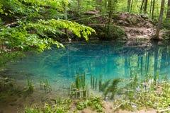 Μάτι λιμνών του μπέη στο εθνικό πάρκο Beusnita, Ρουμανία Στοκ εικόνες με δικαίωμα ελεύθερης χρήσης