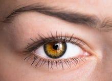 Μάτι με το ρολόι Στοκ Εικόνα
