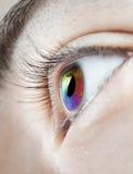 μάτι πολύχρωμο στοκ φωτογραφίες
