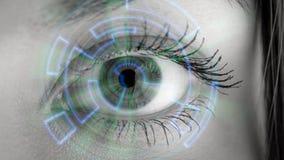 Μάτι που βλέπει τις ψηφιακές πληροφορίες Στοκ φωτογραφίες με δικαίωμα ελεύθερης χρήσης