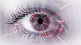 Μάτι που βλέπει τις ψηφιακές πληροφορίες Στοκ Εικόνες
