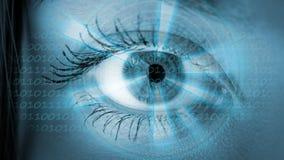 Μάτι που βλέπει τις ψηφιακές πληροφορίες Στοκ Φωτογραφίες