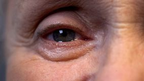 Μάτι της παλαιάς ζαρωμένης κινηματογράφησης σε πρώτο πλάνο προσώπων, της βαθιών φρόνησης και της εμπειρίας ζωής, νοσταλγία στοκ φωτογραφία με δικαίωμα ελεύθερης χρήσης