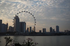 Μάτι της Σιγκαπούρης Στοκ Εικόνες