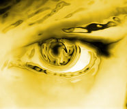 μάτι χρυσό Στοκ Εικόνες