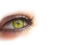 μάτι Στοκ Φωτογραφίες