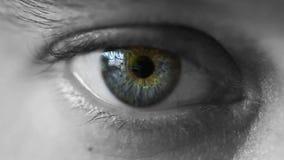 Μάτι απόθεμα βίντεο