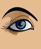 μάτι απεικόνιση αποθεμάτων