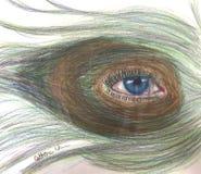 Μάτι Peacock Στοκ Φωτογραφία