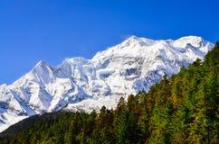 Μέγιστη άποψη βουνών των Ιμαλαίων Annapurna ΙΙ με τα δέντρα στο foreg Στοκ εικόνα με δικαίωμα ελεύθερης χρήσης