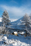 Μέγιστη περιοχή χιονιού στοκ φωτογραφίες