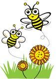 Μέλισσα και μέλι ελεύθερη απεικόνιση δικαιώματος