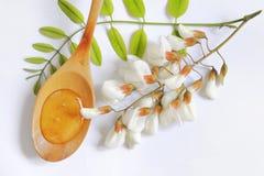 μέλι ακακιών στοκ φωτογραφία με δικαίωμα ελεύθερης χρήσης
