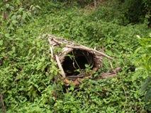 Μέλι επιτροπών με τον παραδοσιακό τρόπο στην Αφρική στοκ εικόνα με δικαίωμα ελεύθερης χρήσης