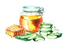 Μέλι και Aloe Βέρα Συρμένη χέρι απεικόνιση Watercolor Διανυσματική απεικόνιση
