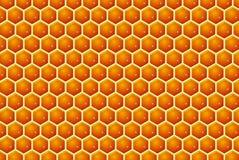 μέλι κυττάρων διανυσματική απεικόνιση
