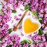 Μέλι με τα άνθη ακακιών στοκ εικόνα με δικαίωμα ελεύθερης χρήσης