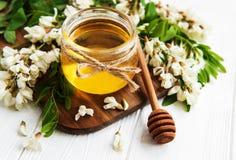 Μέλι με τα άνθη ακακιών στοκ φωτογραφίες