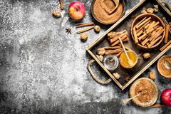 Μέλι με την επίγειες κανέλα και τη Apple Στοκ Εικόνες