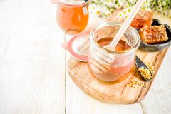 Μέλι με τις χτένες γύρης και μελιού στοκ εικόνα