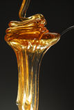 μέλι ροής Στοκ φωτογραφίες με δικαίωμα ελεύθερης χρήσης