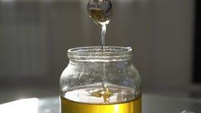 Μέλι σεσουλών με ένα κουτάλι από ένα βάζο αγωγοί μελιού από το κουτάλι σε σε αργή κίνηση απόθεμα βίντεο