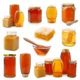 μέλι συλλογής στοκ φωτογραφία